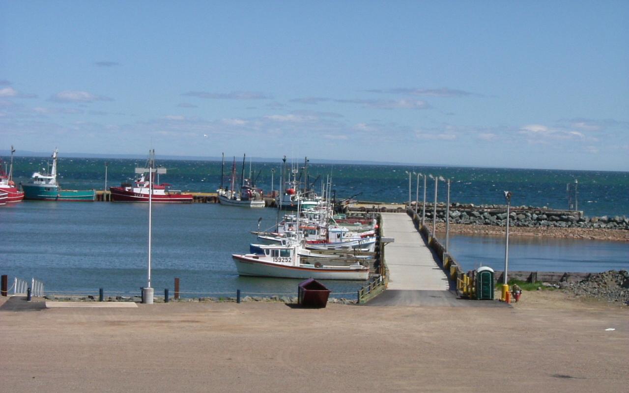 Sailboat Port With Boats And 529562 Wallpaper wallpaper