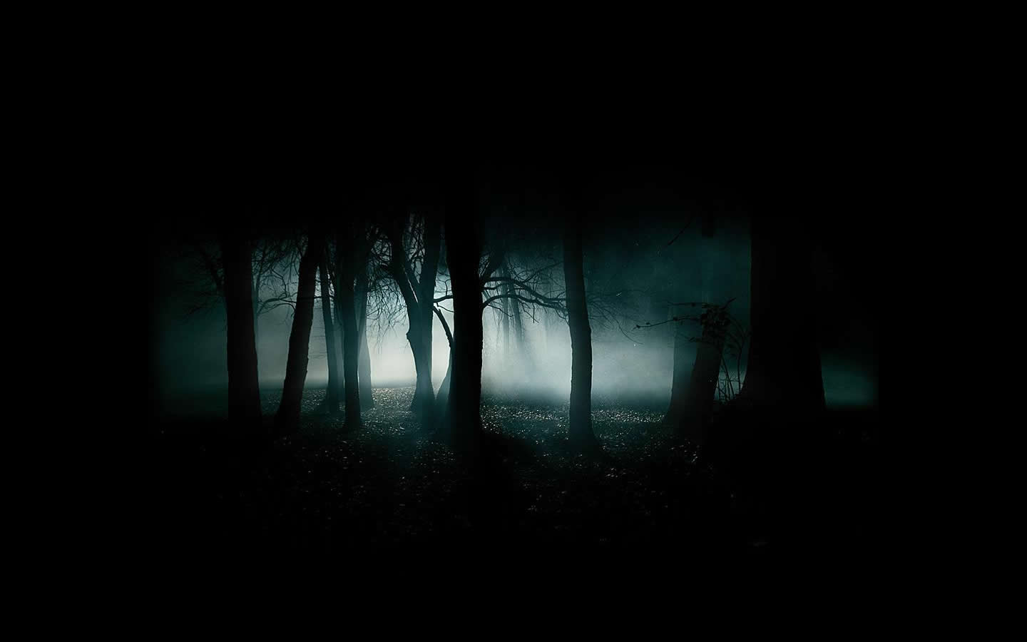 Abstract Hd Forest 41564 Wallpaper wallpaper for Cool Dark Backgrounds Hd  45ifm