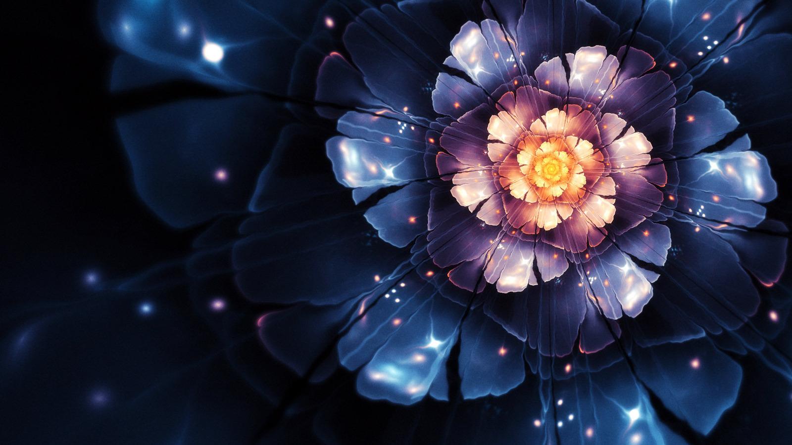 Flower Abstract 389047 Wallpaper wallpaper