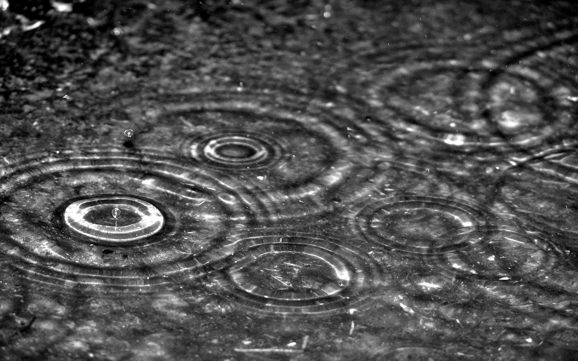 Abstract Water Drops Miscellaneous Rain Hits Puddle Free 375642 Wallpaper wallpaper