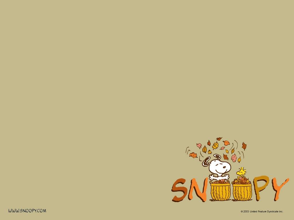 peanuts thanksgiving hd wallpaper