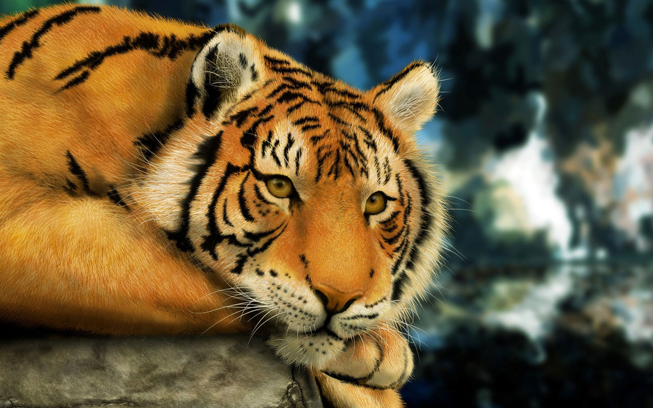 Animal description tiger digital art nature 253191 wallpaper wallpaper altavistaventures