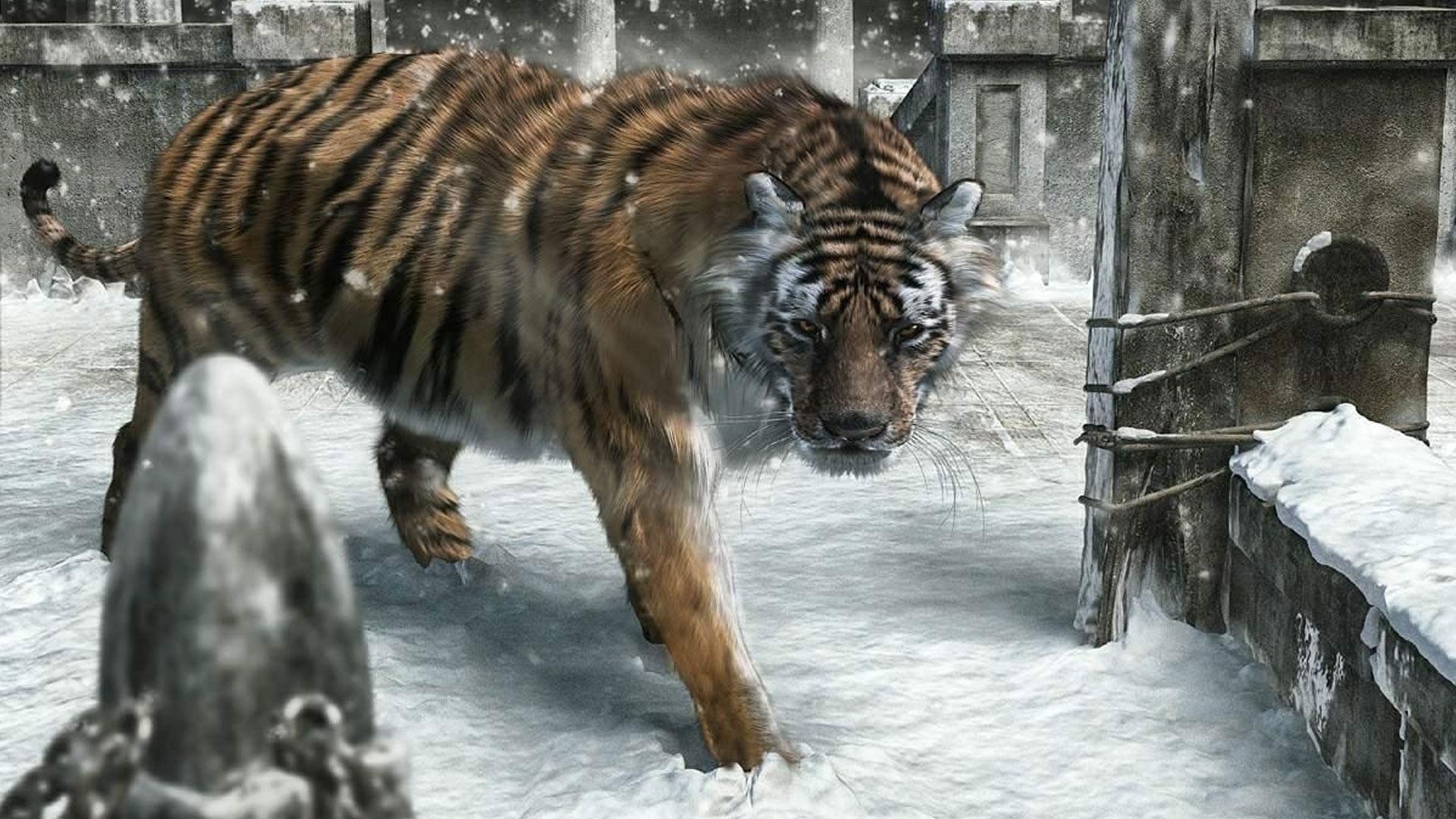 D Cartoons Graphics New Year Tiger 369484 Wallpaper Wallpaper