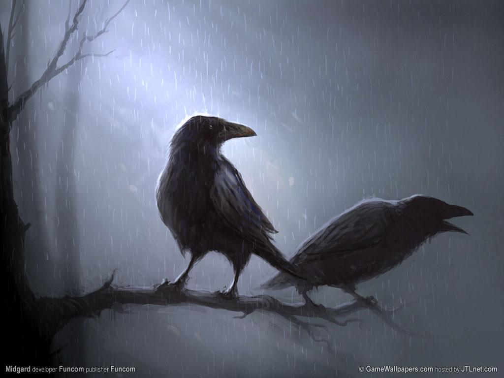 Animal Home Ravens 86030 Wallpaper Wallpaper