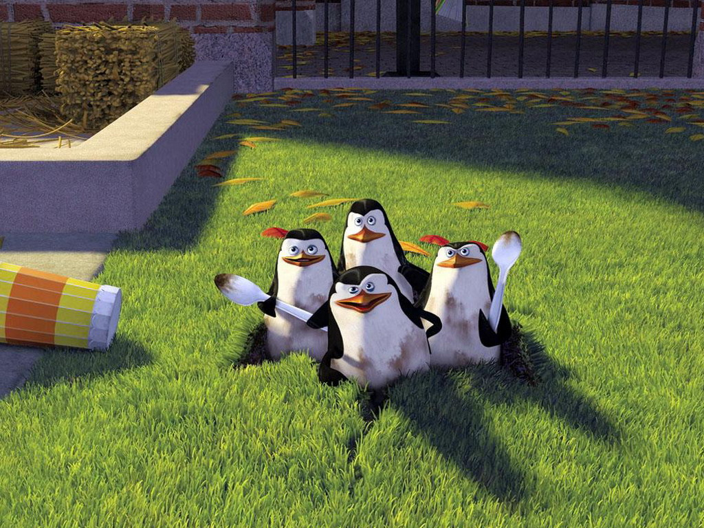 Most Inspiring Wallpaper Movie Penguins Madagascar - the-penguins-of-madagascar-picture-from-movie-and-p-os-317234  Graphic_591329.jpg