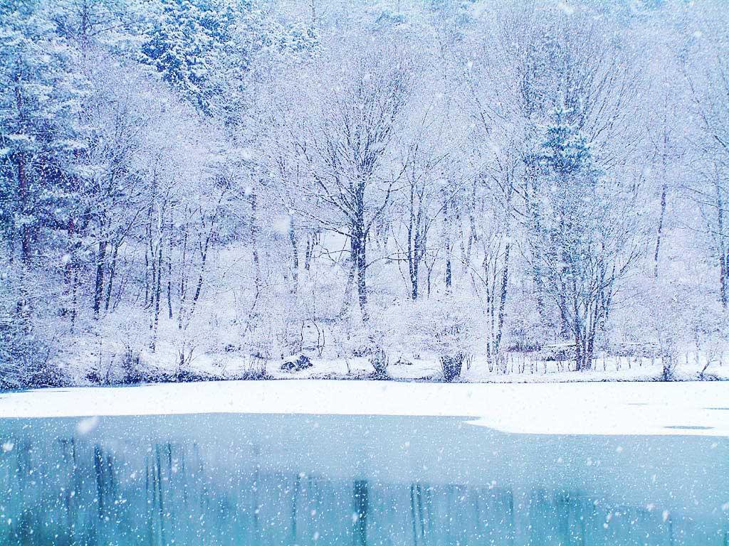 Free Winter Wallpapers For Desktop Wallpaper
