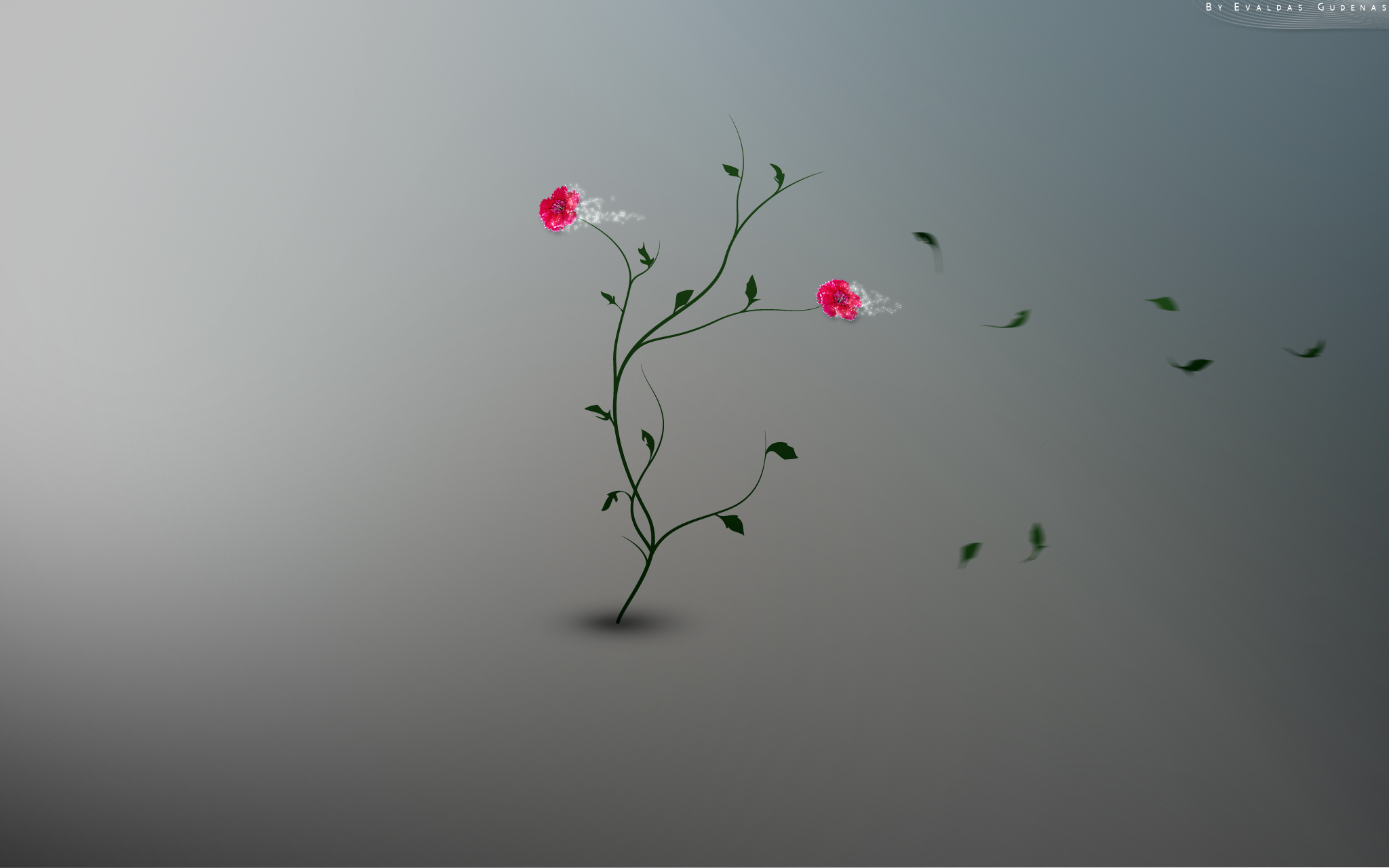 Pink Hd Abstract For Windows Macintosh And Linux Glittered Flower 667510 Wallpaper wallpaper