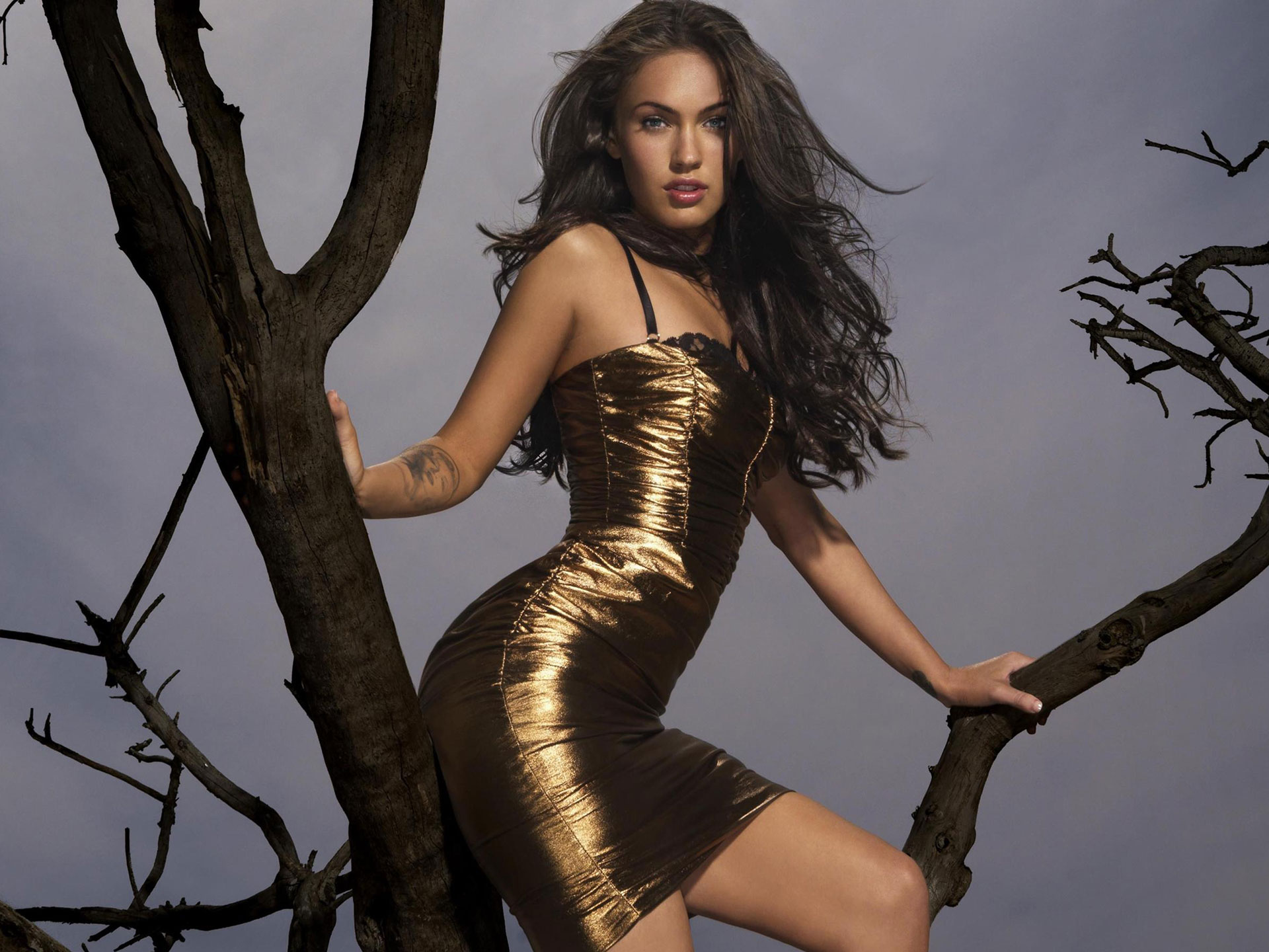 Megan Fox Latest 2010 wallpaper