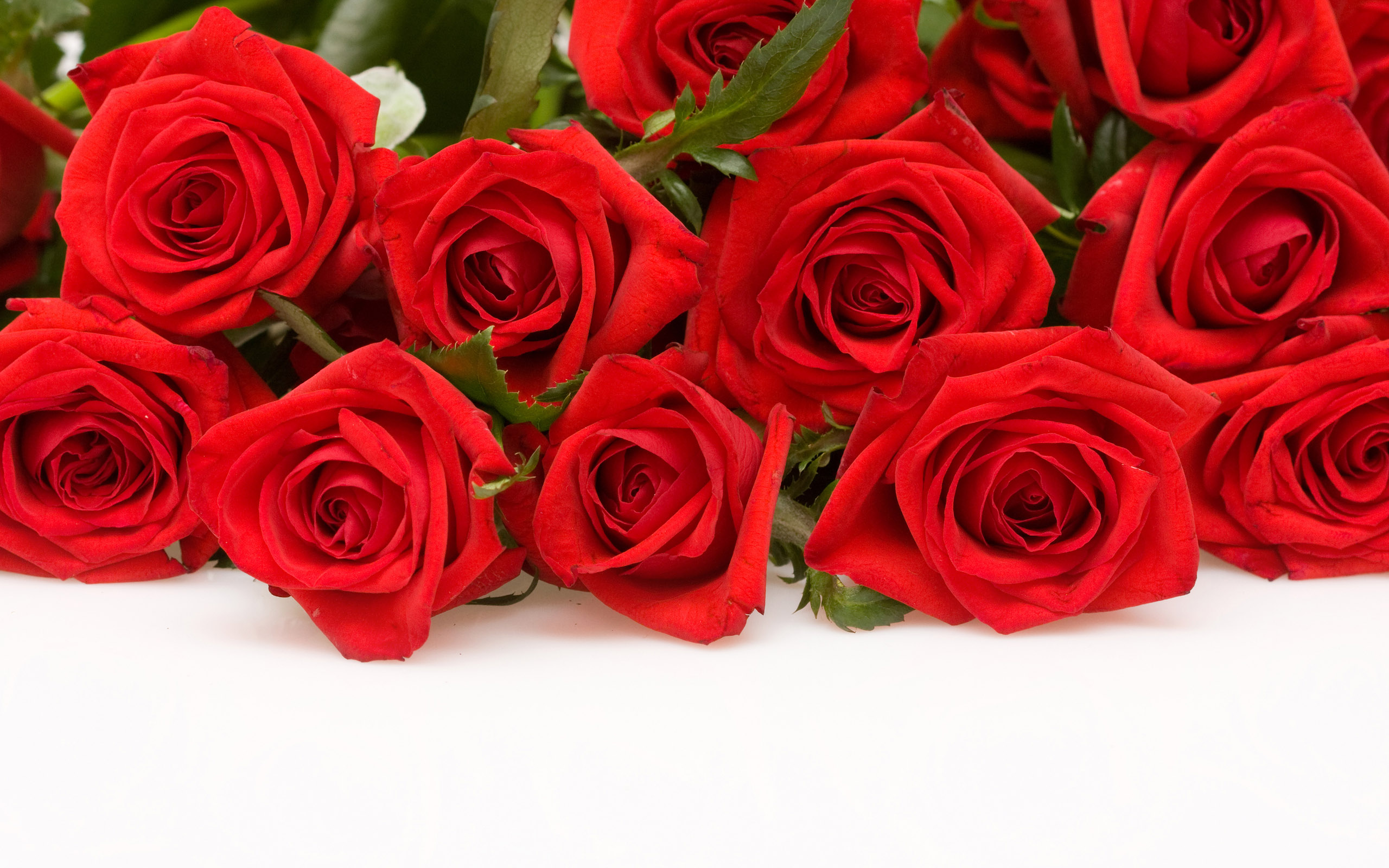 Red Abstract Roses Awesome Bouquet Shift 690898 Wallpaper wallpaper