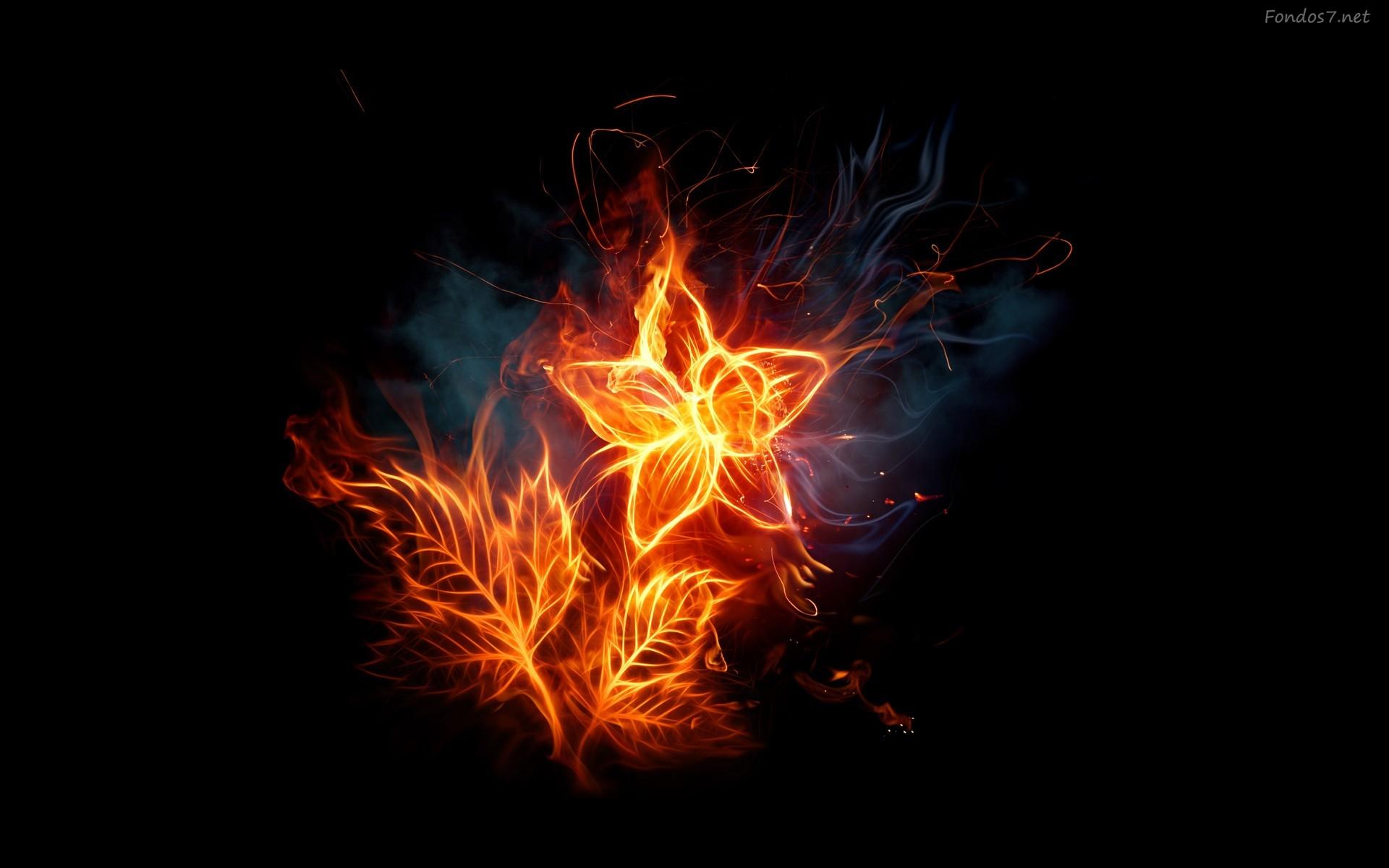Jordan Carver Hd Best Flames Flowers On Fire 446417 Wallpaper wallpaper