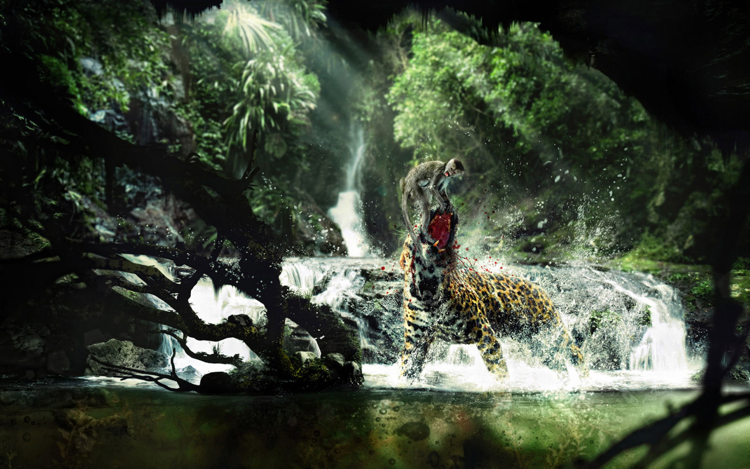 Wild Animals Life Hd Jootix 749259 Wallpaper