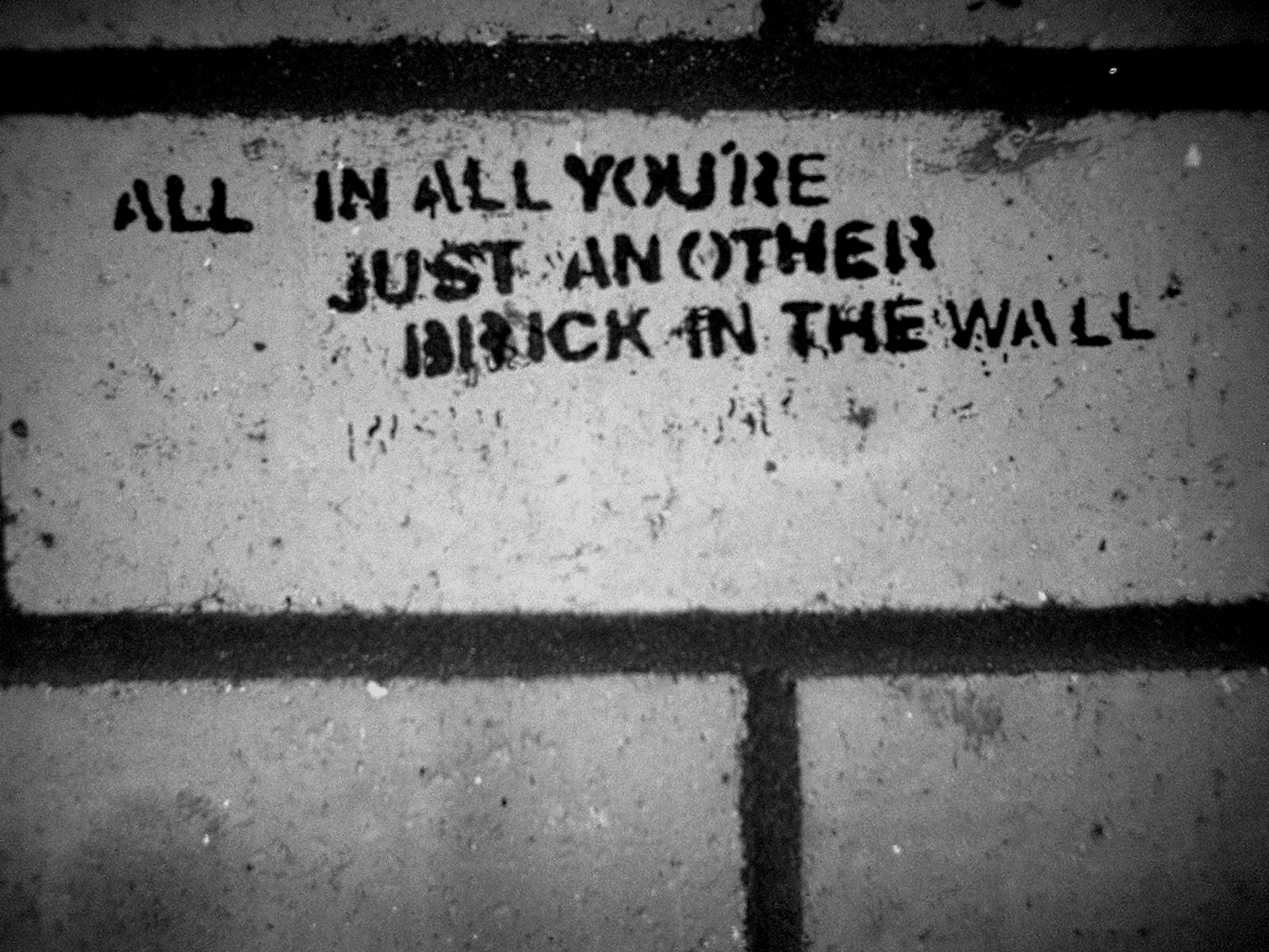 Pink Floyd Animals Quotes The Wall Desktop X 737287 Wallpaper