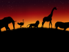 Wild Animals African V By Lukasiniho On Deviantart 1207480 Wallpaper wallpaper