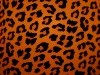 Animal Print 567525 Wallpaper wallpaper