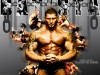 Smile Cartoon Wwe Batista Bomb Latest 306198 Wallpaper wallpaper