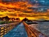 Architecture Towards The Future Boat Bridge Glow Lake Sky Sunset Trees 382012 Wallpaper wallpaper